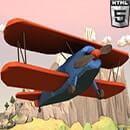 Çılgın Uçak
