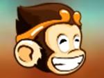 Maceracı Maymun