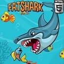 Şişman Köpekbalığı